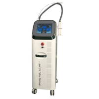 Q-Switch Laser Tattoo Removal Equipment/Nd yag laser tattoo removal machine