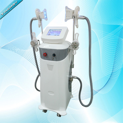 Fat Freezing Cryolipolysis Cold Body Sculpting Machine With Large Cryo Heads Size Cryolipolysis machine