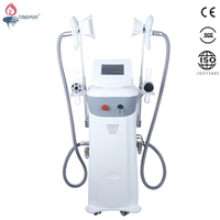 Whole body cryotherapy machine / Cool tech fat freezing lipo laser machine for sale