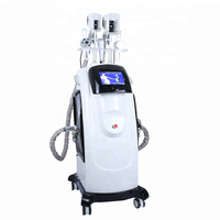 Cool Max -14 Celsius weight loss fat freezing cripolilisis rf cavitation machine