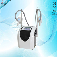 Freezing fat machine criolipolisis portable 2017 criolipolisis machine cryolipolysis