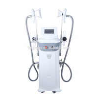 two handpieces cryolipolysis machine fat freezedevice tm-908e