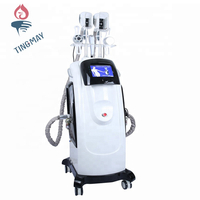 Professional hot cryolipolysis machine/cavitation machine/RF skin tightening machine
