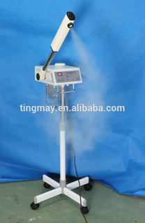 Facial Steamer/Steamer Facial/Facial Steam TM-818